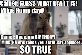 Hump Day Memes - meme maker hump day camel generator