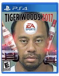 Tiger Woods Memes - tiger woods memes