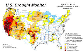 california map drought california drought killed 12 million forest trees since last year