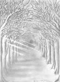 dark forest path drawing
