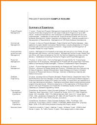 example it resume summary resume overview example how to write resume summary examples
