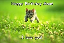 Funny Mom Memes - funny happy birthday mom dad brother sister cousin memes jokes