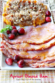 Cranberry Glazed Pork Loin U2013 Go Eat And Repeat Apricot Glazed Ham Can U0027t Stay Out Of The Kitchen