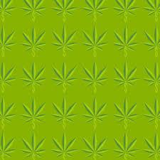 jeff sessions u0027 war on medical marijuana gets public health all