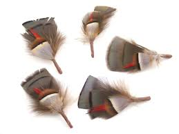 traditional feather hat mounts for ladies and gentlemen u0027s country