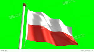 Indonesian Flag Animation Poland Flag Stock Animation 1694099