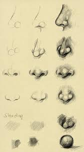how to draw a nose art pinterest draw sketches and