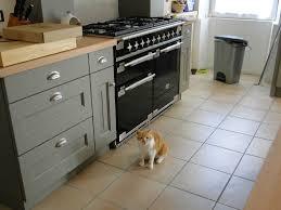 cuisine avec piano de cuisson cuisine avec piano de cuisson inspirations avec dernia re ligne