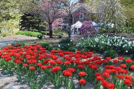 Clark Botanical Gardens Clark Botanical Gardens Of Gems Island Weekly Home