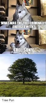 Tree Puns 25 Best Memes About Tree Puns Tree Puns Memes