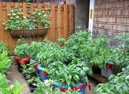 Container Vegetable Gardening Ideas Backyard Container Vegetable Garden Ideas Gardening With Fall Best