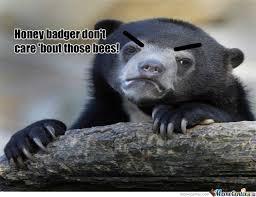 Meme Honey Badger - honey badger dont care meme