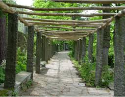 Trellis With Vines Patio U0026 Pergola Backyards Superb Exterior Design Wonderful