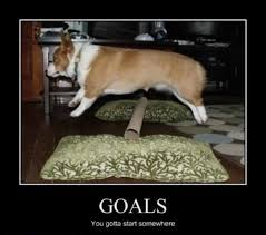 best corgi memes part 5 corgi dogs funny pinterest corgi