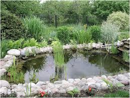 backyards cozy 35 impressive backyard ponds and water gardens 95