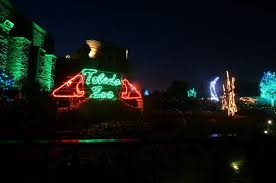 lights to remember toledo zoo builds on its annual christmas