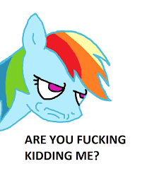 Are You Kidding Me Meme - rainbow dash are you f king kidding me meme by lunabestpony