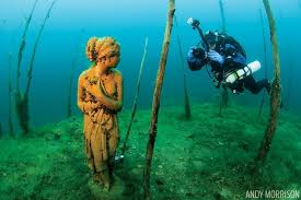 Ohio snorkeling images Incredible underwater forest scuba diving jpg