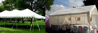 canopies for rent piolin party rentals taquizas tacos perris