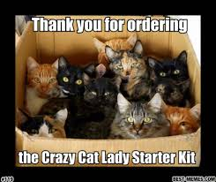 Crazy Cat Lady Memes - thank you for ordering cat meme cat planet cat planet