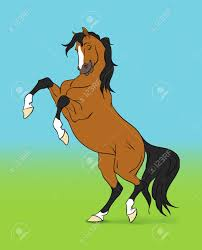 cartoon bay horse on colour background stock photo picture and