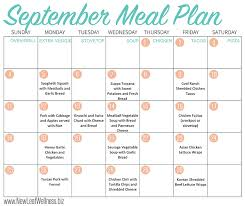 meal calendar meal plan template 15 free word pdf psd