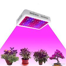 what are the best led grow lights for weed us stock 600 1000 1200w led grow light full spectrum ir uv veg