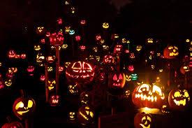 boo camp jack o lantern lore and pumpkin caving india parent