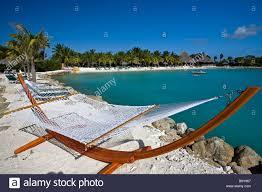 iguana island hammock on the beach iguana beach renaissance island aruba stock