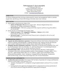 examples of good resumes for college students download good