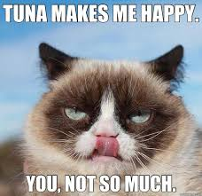 Happy Cat Meme - tuna makes me happy cat meme cat planet cat planet