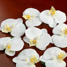 artificial orchids white floating artificial orchid heads petals and leaves