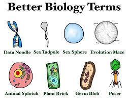 Meme Biology - tobeagenius tag yourself i m the data noodle frick yeah biology