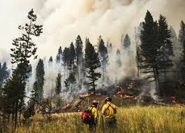 How Many Wildfires In Washington State by More Than 1 Million Acres Have Burned This Summer State Fire Fund