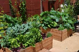 kitchen garden ideas enclosed vegetable garden design decorating clear
