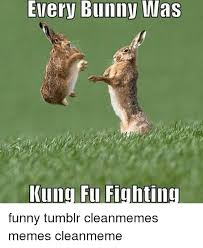 Funny Rabbit Memes - every bunny was kung fu fighting funny tumblr cleanmemes memes
