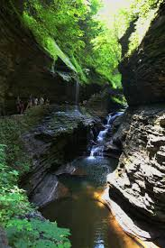35 best watkins glen and the finger lakes images on pinterest