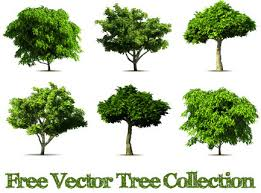 free vector realistic trees free vector 5 888 free