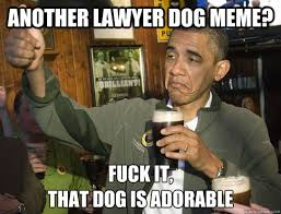 Obama Dog Meme - another lawyer dog meme fuck it that dog is adorable upvoting