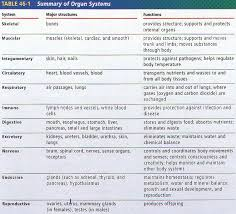 intro to human body 46bi biology junction