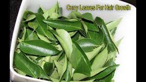 how to stop hair loss very fast with curry leaves youtube