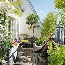 baum fã r balkon 12 best balkon images on terraces backyard and
