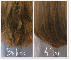 hairstyle thin frizzy dead ends short medium length help quick and easy best 25 split ends ideas on pinterest split end treatment dry
