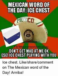 Mexican Birthday Meme - happy birthday mexican word of the day mne vse pohuj