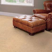eco flooring options sustainable flooring non toxic durable affordable