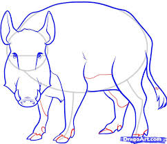 how to draw a boar wild boar step by step forest animals