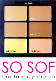 Yellow Swatches Mac Pro Concealer And Corrector Palette In Medium Review U0026 Swatches