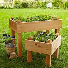 farmer d cedar raised bed williams sonoma