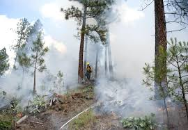 Wildfire Training by Training Topical Coverage At The Spokesman Review
