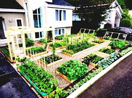 vegetable garden layout ideas uk post throughout how to design a